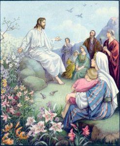 Consider the Lilies Matthew 6:28-29