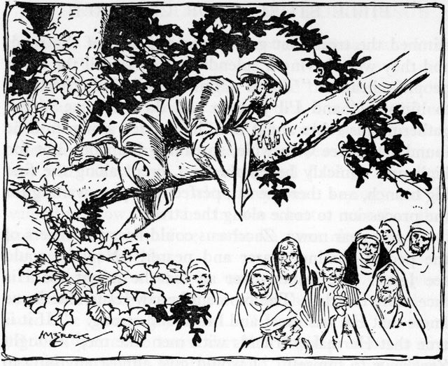 Zacchaeus in a sycamore tree (Luke 19:4)
