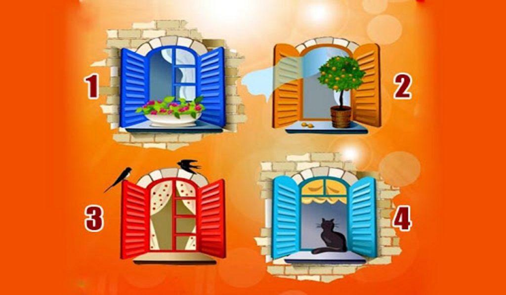 Quale finestra sceglieresti? Cosa vorresti cercare nel mondo?