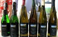 Il vino polacco, dalle sponde del fiume Vistola a Roma