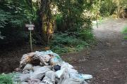 Basta rifiuti all'interno del parco