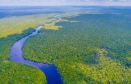 """""""Amazzonia, deforestazione made in Italy"""""""