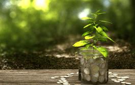 Green economy: pubblicato il X rapporto GreenItaly