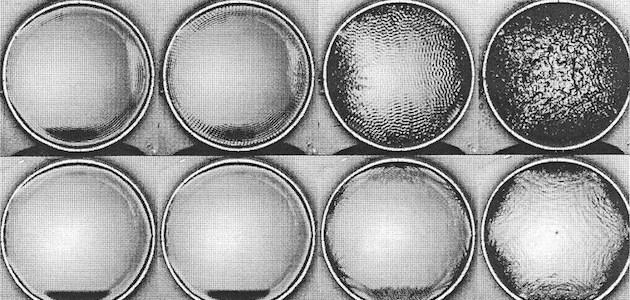 quantistica | la vocedelcarro.it