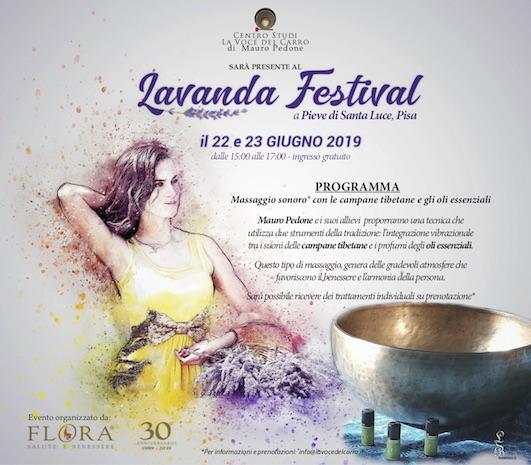lavanda | lavocedelcarro.it