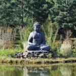 meditazione | lavocedelcarro.it