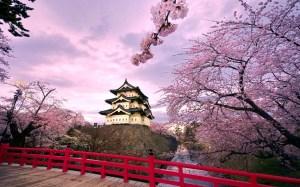 Castello-di-Hirosaki-Giappone-720x1152