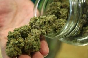 medizinisches-cannabis