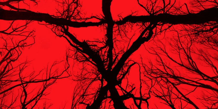 blair-witch-2016-trailers-posters