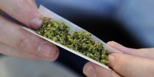 torino-il-comune-legalizza-la-cannabis-marijuana-libera-600x300