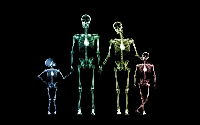 family-skeletons-1080P-wallpaper
