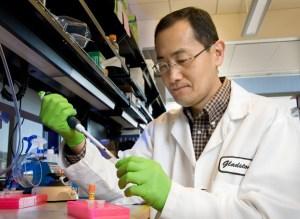 Shin'ya Yamanaka (1962) è un medico giapponese, professore all'Università di Kyoto, specializzato sulle cellule staminali pluripotenti indotte e biologia dello sviluppo
