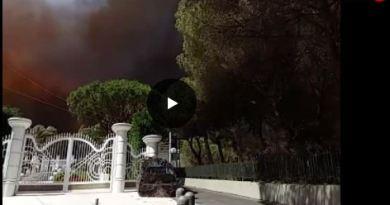 Incendi: devastazioni in Sardegna e sul Vesuvio