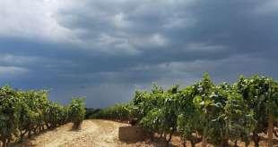 Lettera a un amico in viaggio per la Puglia – Le parole di Andrea