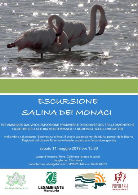 """Escursione con guida gratuita alla """"Salina dei Monaci"""" per apprezzare l'esplosione primaverile di biodiversità"""