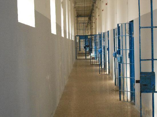 """Rimangono in carcere i componenti della """"banda degli orfanelli"""", esclusi gli arresti domiciliari"""