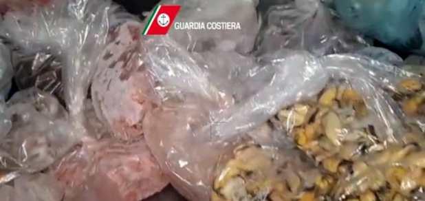 Polignano a Mare, pesce scaduto e privo di tracciabilità: sequestrati 170 chili in due noti ristoranti
