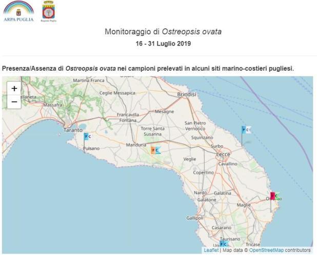 Alga tossica in Salento: nessuna emergenza, bandiera gialla a Torre Colimena secondo il monitoraggio Arpa Puglia