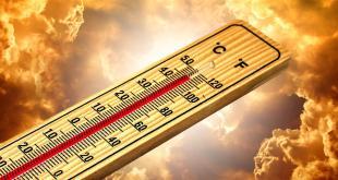 """Temperature oltre di 40 gradi: Puglia verso la """"tropicalizzazione"""""""