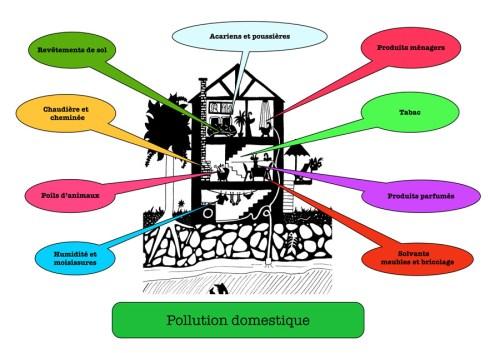 Pollution domestique