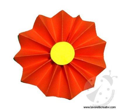 fiore-fisarmonica-4
