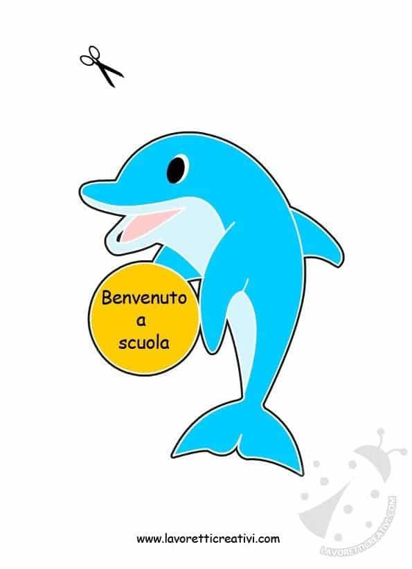 delfino-accoglienza
