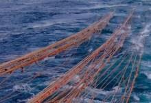Photo of Sgravio contributivo imprese che esercitano la pesca costiera e nelle acque interne e lagunari: misura ridotta al 44,32%