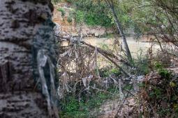 Suciedad Río Guadaira
