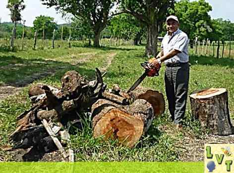 el Lic. Andres Santos Larios, ha atentado contra la Naturaleza