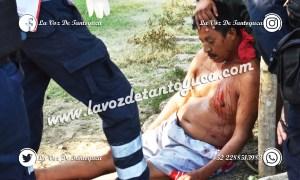 Tras agresión, muere vendedor de caballos en Poza Rica   LVDT