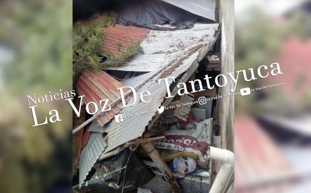 Podan árbol para evitar una tragedia y ramas destruyen una casa