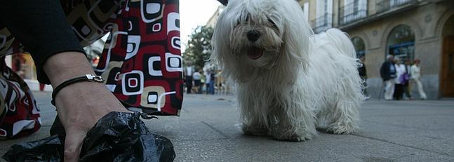 La campaña de control de canes iniciada en el Río San Pedro se extiende al resto de la localidad