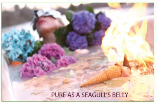 pure as a seagull's belly at jacques and natasha german gallery