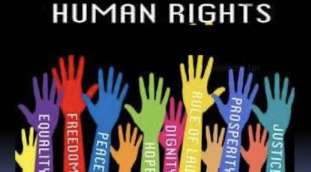 4C25712C D3EC 4487 B952 3B6323231E85 ROLE OF NGOs IN PROTECTION OF HUMAN RIGHTS