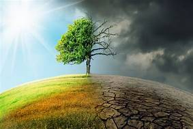 th 1 Climate Change and IPR