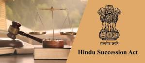 summary of hindu succession act 1956