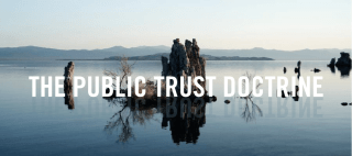 Public Trust Doctrine - MC Mehta vs Kamal Nath