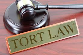 Definition, Nature and Scope of Tort and important maxims