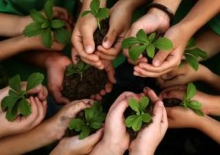 Fundamental Principles of International Environmental Law