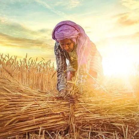 Benefits of Farm Bill 2020