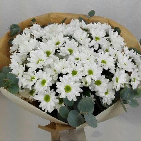 Flores para el jardín 3