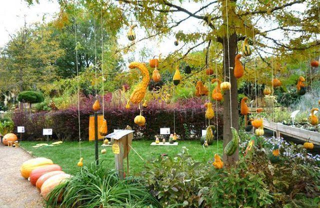 Adorna tu jardín con estos diseños 3