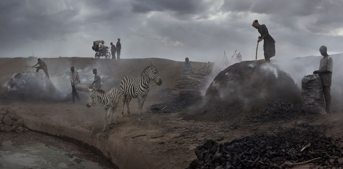Nick Brandt, Charcoal Burning With Zebras (2018), archival pigment print; Credit: Courtesy of the artist and Fahey/Klein Gallery
