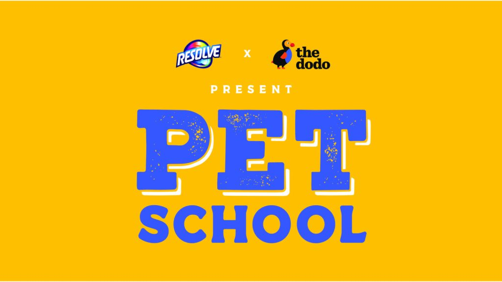 Resolve x The Dodo Present Pet School
