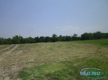 tractor acreage cleanup