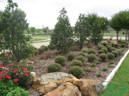 dry bed landscaping design example