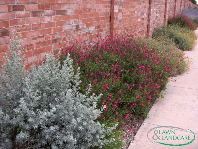 seasonal color landscaping design