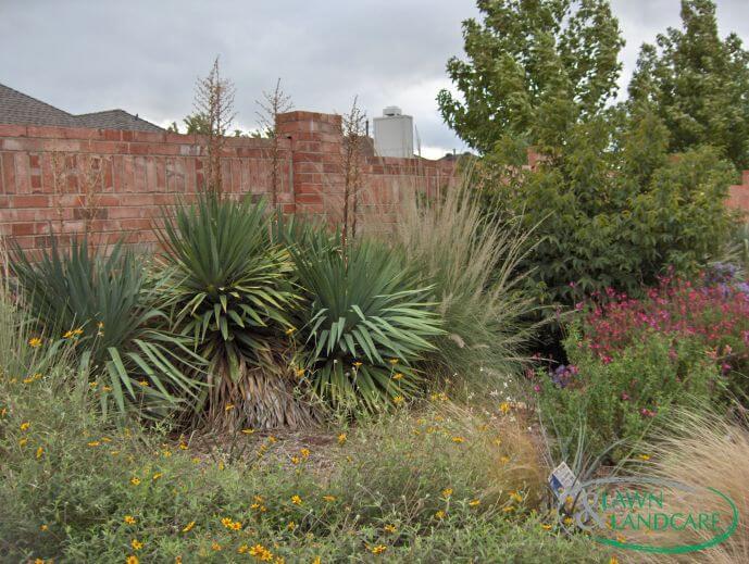 seasonal colors landscaping design