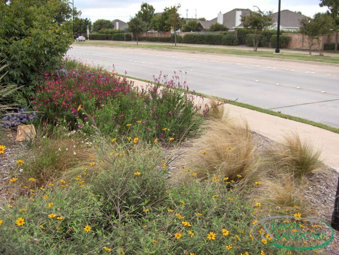 landscaping and flower design
