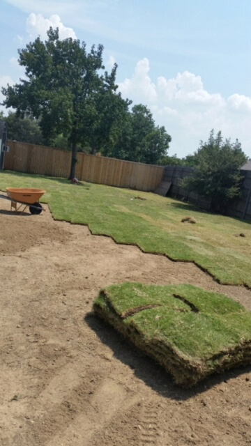 installing sod texas lawns